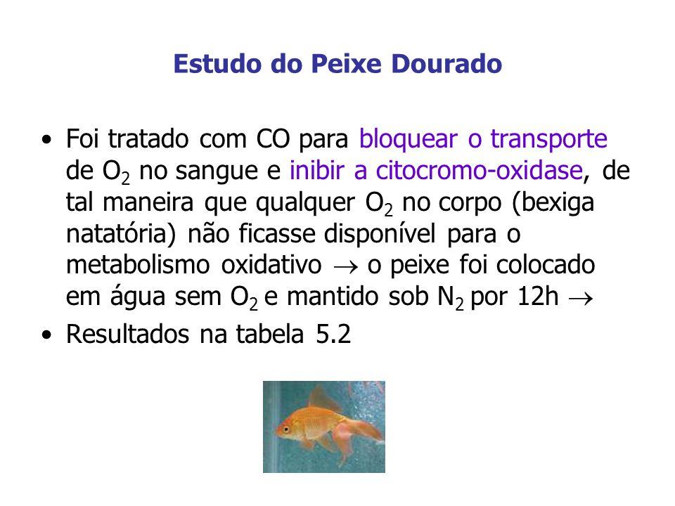 Estudo do Peixe Dourado Foi tratado com CO para bloquear o transporte de O 2 no sangue e inibir a citocromo-oxidase, de tal maneira que qualquer O 2 n