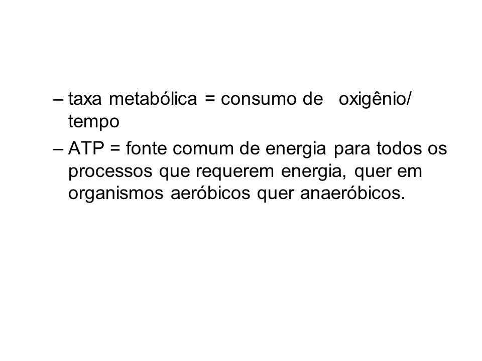 –taxa metabólica = consumo de oxigênio/ tempo –ATP = fonte comum de energia para todos os processos que requerem energia, quer em organismos aeróbicos