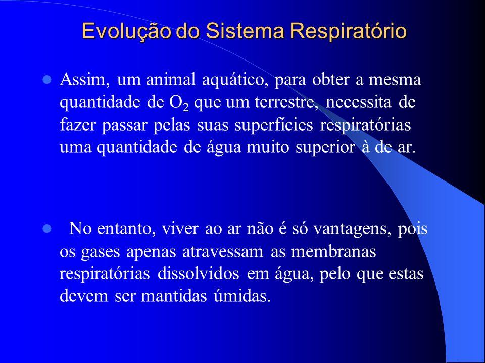 Evolução do Sistema Respiratório Assim, um animal aquático, para obter a mesma quantidade de O 2 que um terrestre, necessita de fazer passar pelas sua