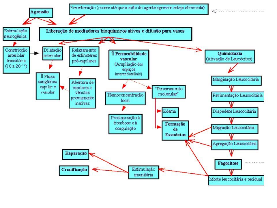 CLASSES TERAPÊUTICAS O QUE DESENCADEIA O PROCESSO INFLAMATÓRIO? TRAUMA Fisico Quimico Biológico DANO CELULAR LIBERAÇAO DE MEDIADORES QUIMICOS