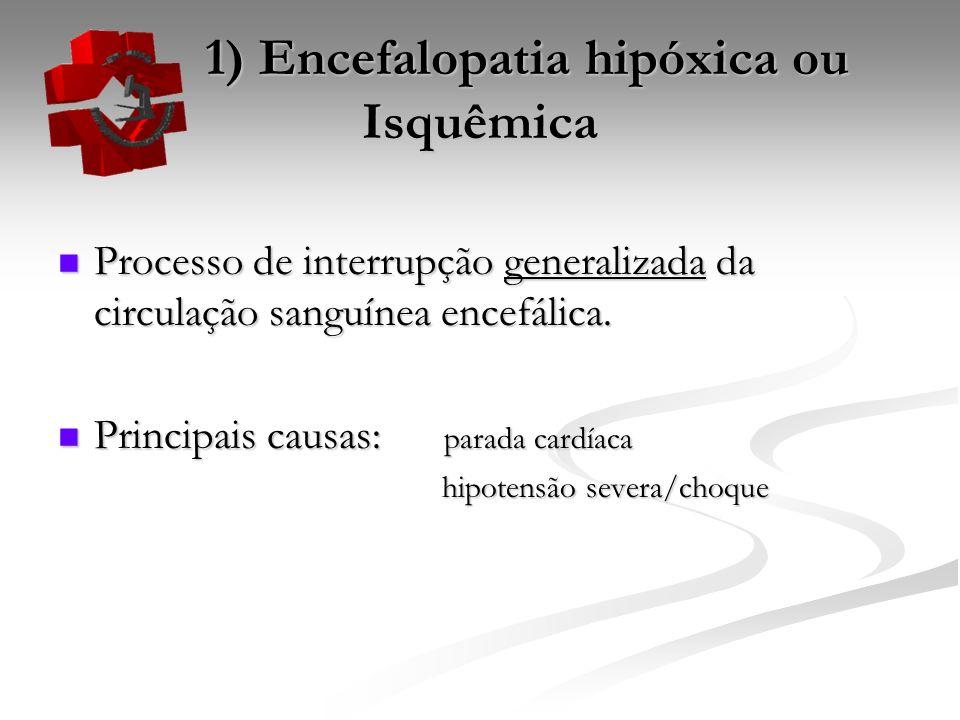 1) Encefalopatia hipóxica ou Isquêmica 1) Encefalopatia hipóxica ou Isquêmica Processo de interrupção generalizada da circulação sanguínea encefálica.