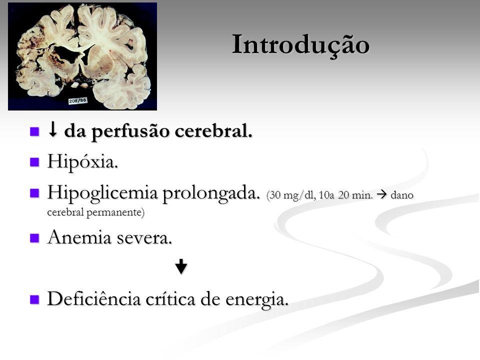 Introdução da perfusão cerebral. da perfusão cerebral. Hipóxia. Hipóxia. Hipoglicemia prolongada. (30 mg/dl, 10a 20 min. dano cerebral permanente) Hip