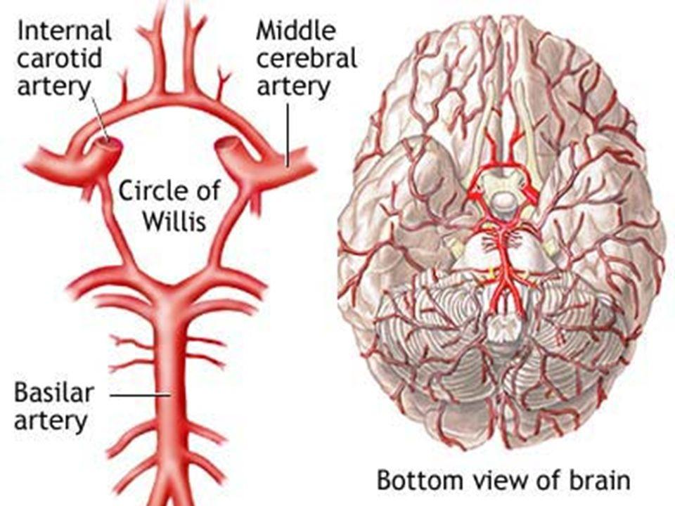 2)Infarto Cerebral IC Anêmico IC Hemorrágico IC Anêmico IC Hemorrágico -Trombose arterial -Trombose venosa -Vasoespasmo -Hipotensão arterial -Embolia -Embolia Diminuição ou interrupção do fluxo sanguíneo cerebral.