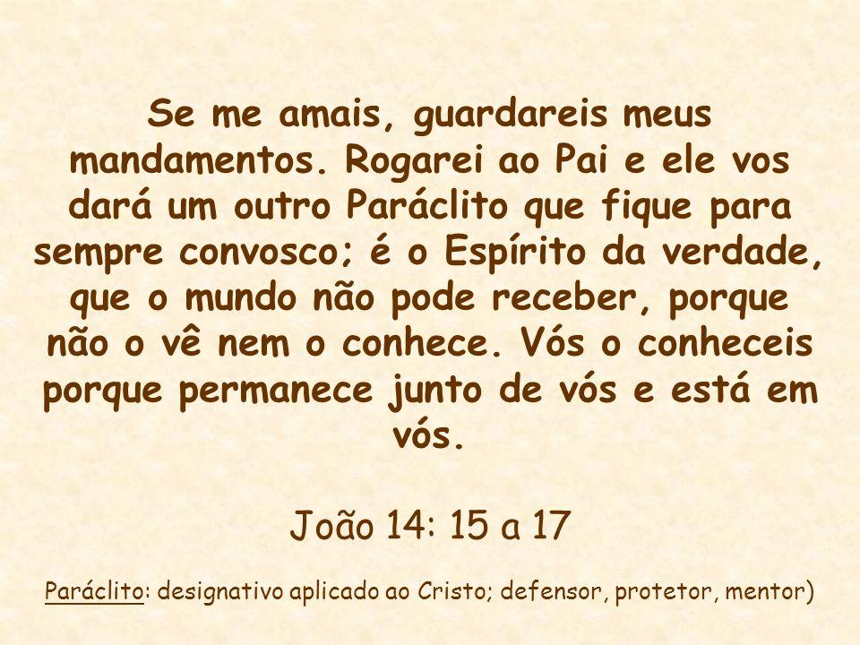 Se me amais, guardareis meus mandamentos. Rogarei ao Pai e ele vos dará um outro Paráclito que fique para sempre convosco; é o Espírito da verdade, qu