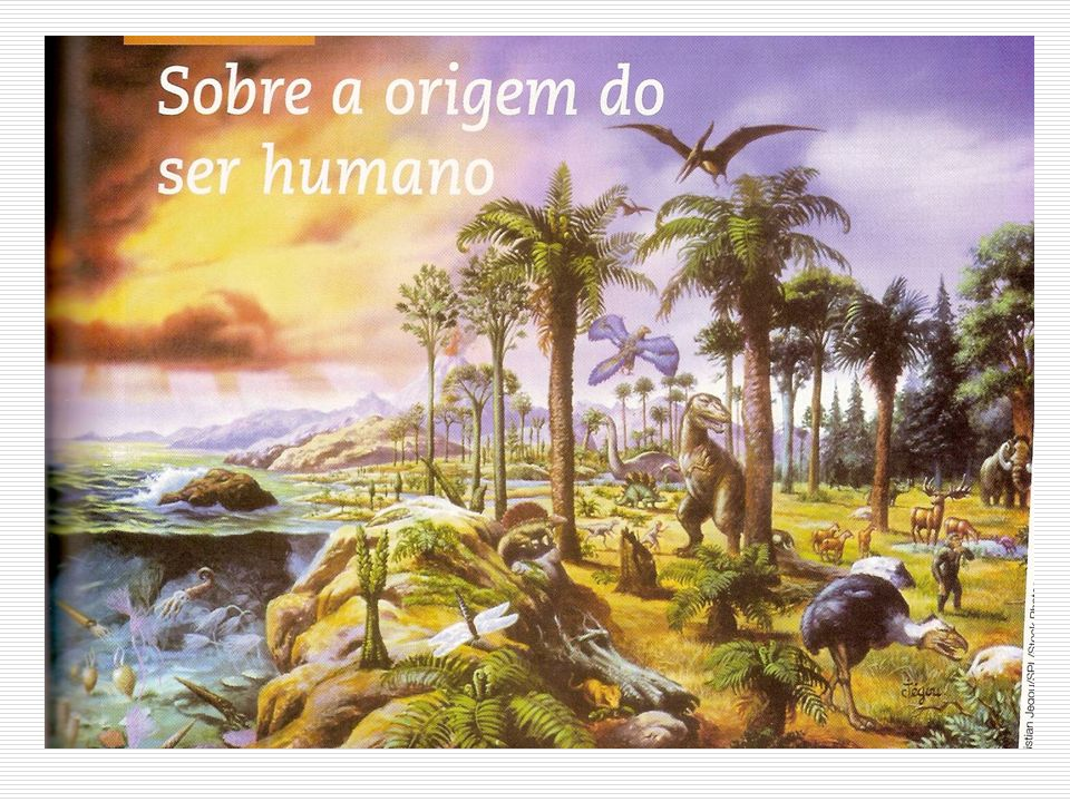 A Pré-História Prof. Alcidélio Camilo