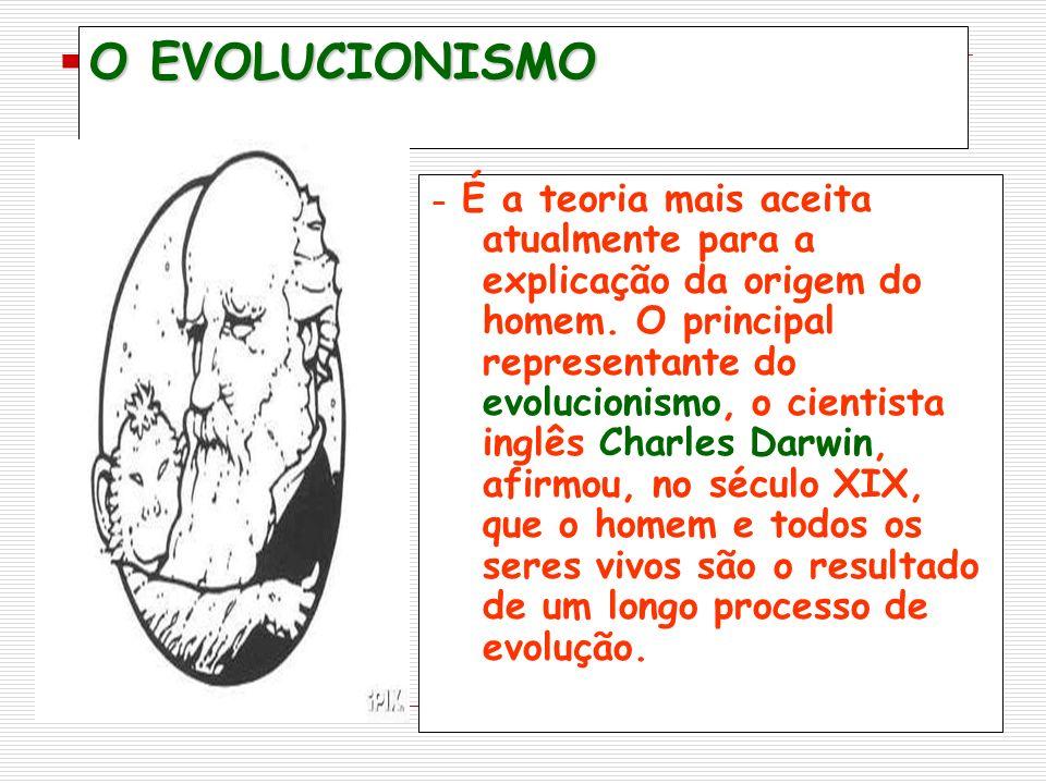 O EVOLUCIONISMO - É a teoria mais aceita atualmente para a explicação da origem do homem.