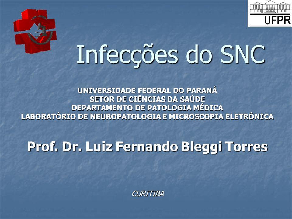 Infecções do SNC UNIVERSIDADE FEDERAL DO PARANÁ SETOR DE CIÊNCIAS DA SAÚDE DEPARTAMENTO DE PATOLOGIA MÉDICA LABORATÓRIO DE NEUROPATOLOGIA E MICROSCOPI