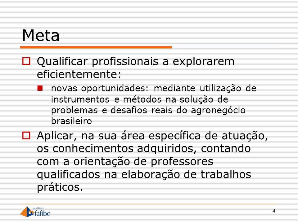 4 Meta Qualificar profissionais a explorarem eficientemente: novas oportunidades: mediante utilização de instrumentos e métodos na solução de problema