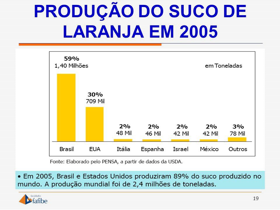 PRODUÇÃO DO SUCO DE LARANJA EM 2005 19