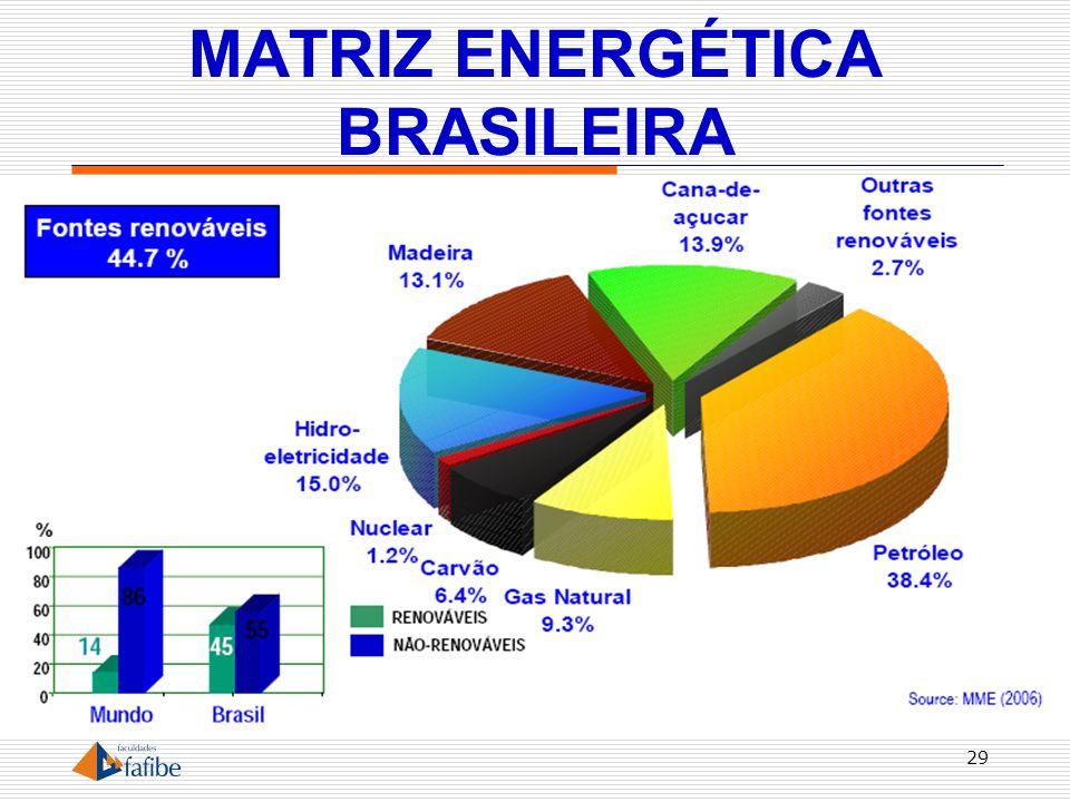 MATRIZ ENERGÉTICA BRASILEIRA 29