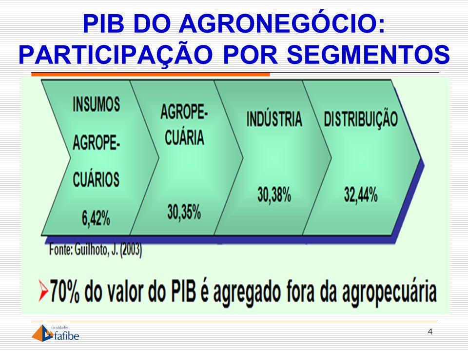 AGRONEGÓCIO BRASILEIRO 5