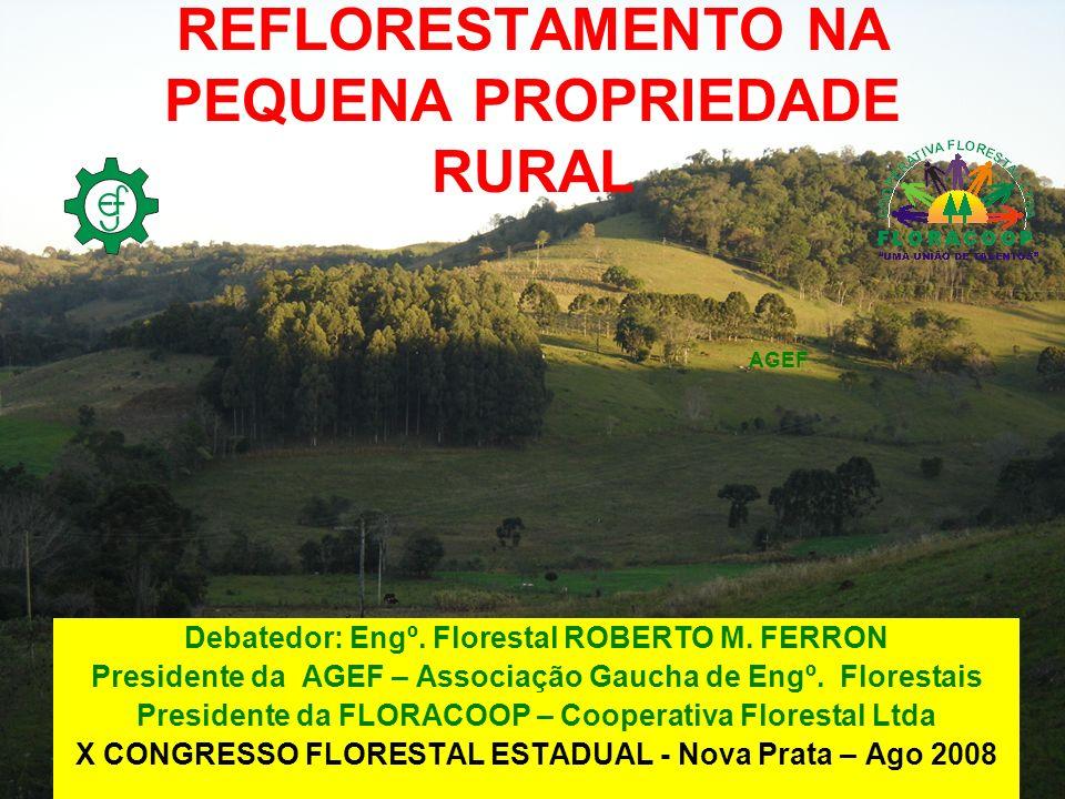 REFLORESTAMENTO NA PEQUENA PROPRIEDADE RURAL Debatedor: Engº. Florestal ROBERTO M. FERRON Presidente da AGEF – Associação Gaucha de Engº. Florestais P