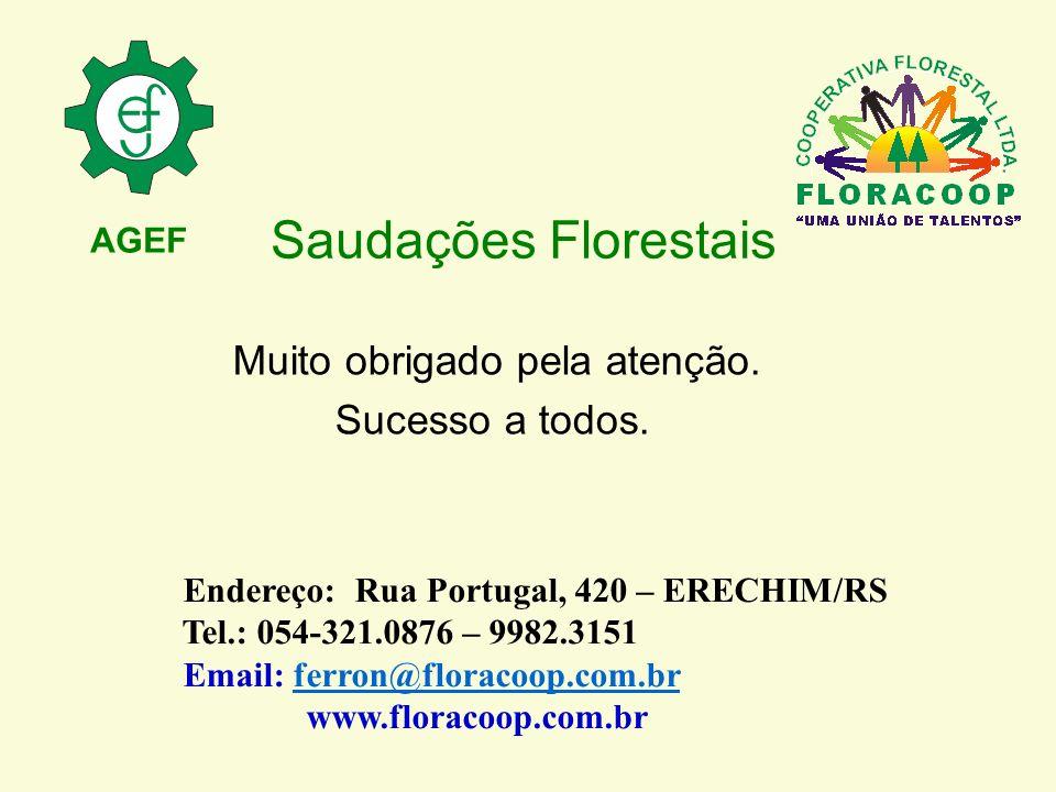 Saudações Florestais Muito obrigado pela atenção. Sucesso a todos. Endereço: Rua Portugal, 420 – ERECHIM/RS Tel.: 054-321.0876 – 9982.3151 Email: ferr