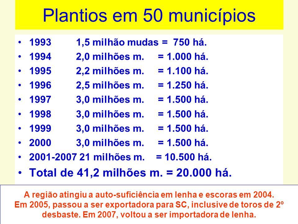 Plantios em 50 municípios 1993 1,5 milhão mudas = 750 há. 1994 2,0 milhões m. = 1.000 há. 1995 2,2 milhões m. = 1.100 há. 1996 2,5 milhões m. = 1.250