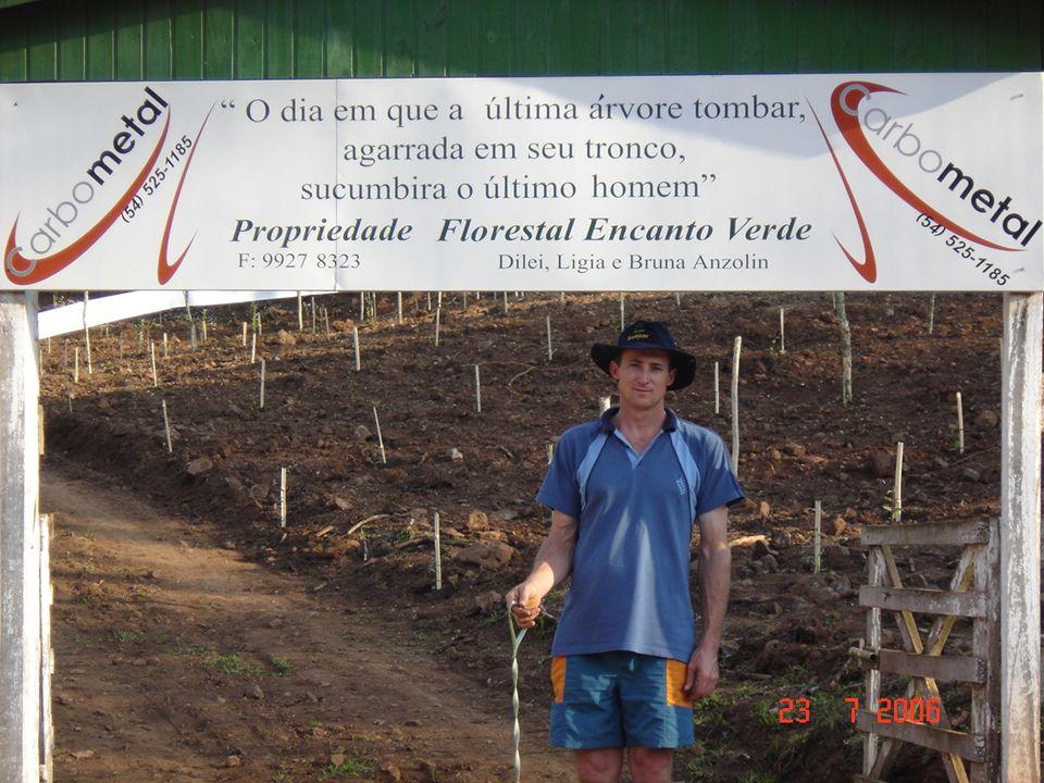 Saudações Florestais Muito obrigado pela atenção.Sucesso a todos.