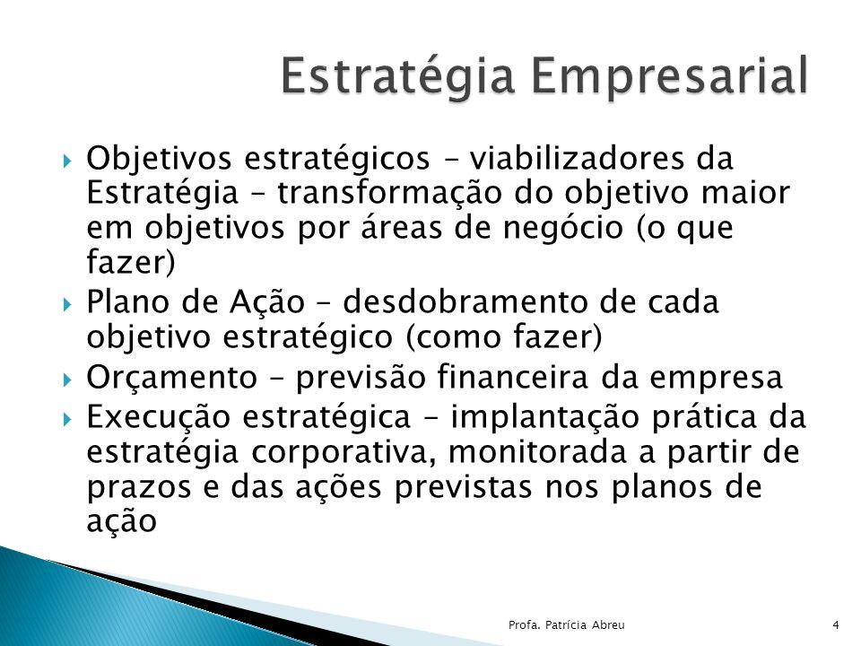 Objetivos estratégicos – viabilizadores da Estratégia – transformação do objetivo maior em objetivos por áreas de negócio (o que fazer) Plano de Ação