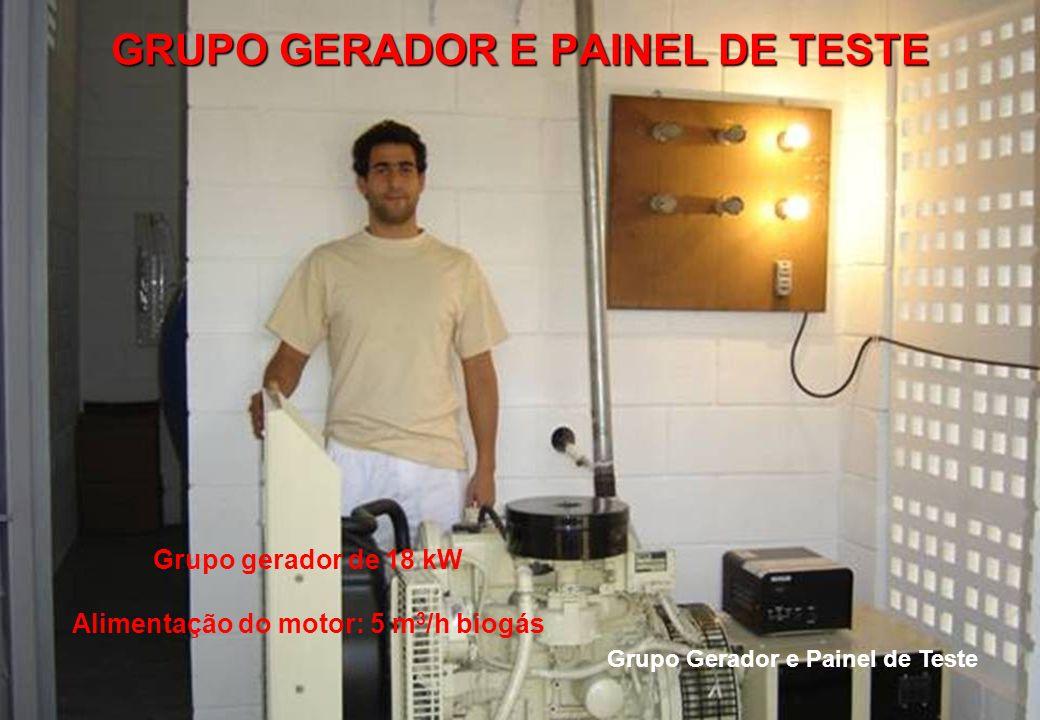Grupo Gerador e Painel de Teste Grupo gerador de 18 kW Alimentação do motor: 5 m 3 /h biogás GRUPO GERADOR E PAINEL DE TESTE