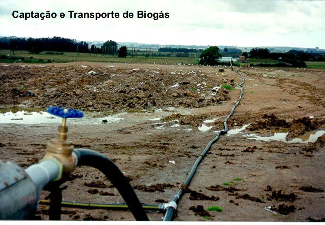 Captação e Transporte de Biogás