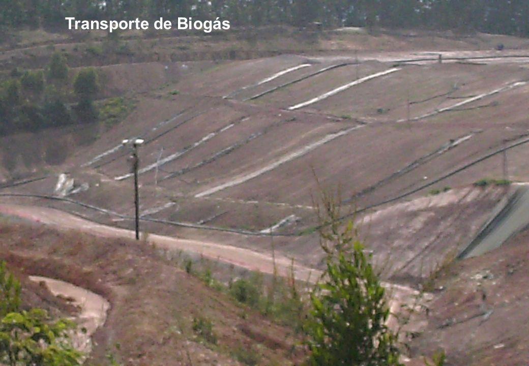 Transporte de Biogás
