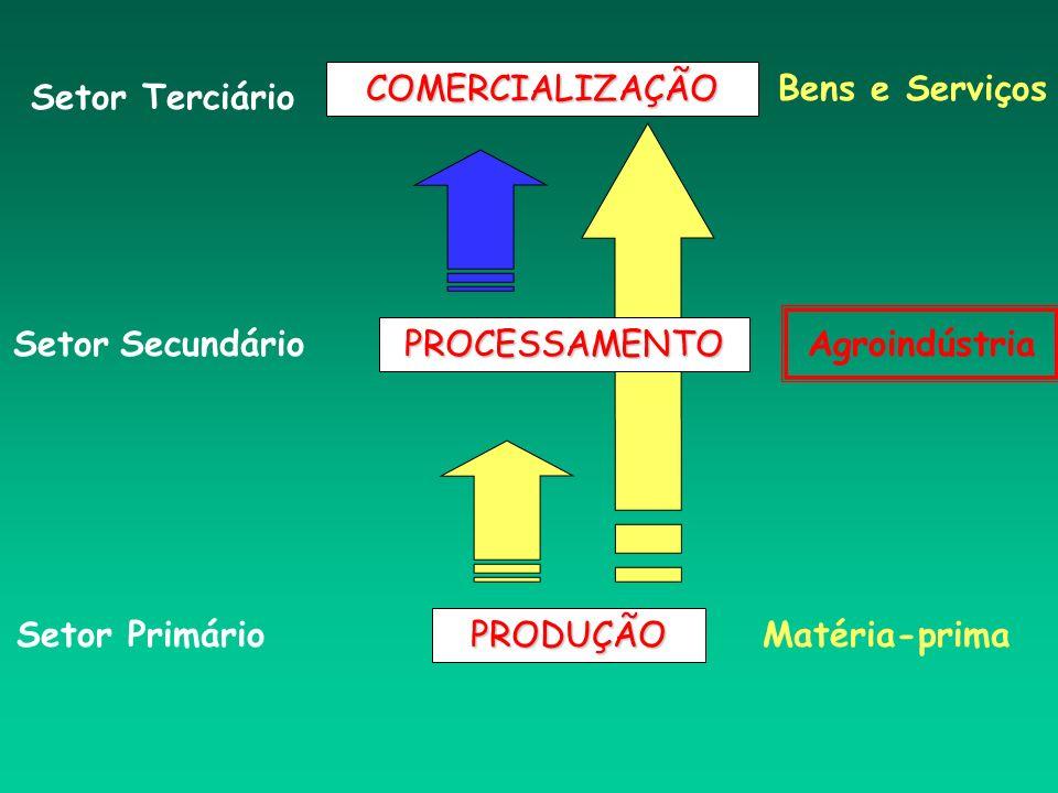 PRODUÇÃO PROCESSAMENTO COMERCIALIZAÇÃO Matéria-prima Agroindústria Bens e Serviços Setor Primário Setor Secundário Setor Terciário