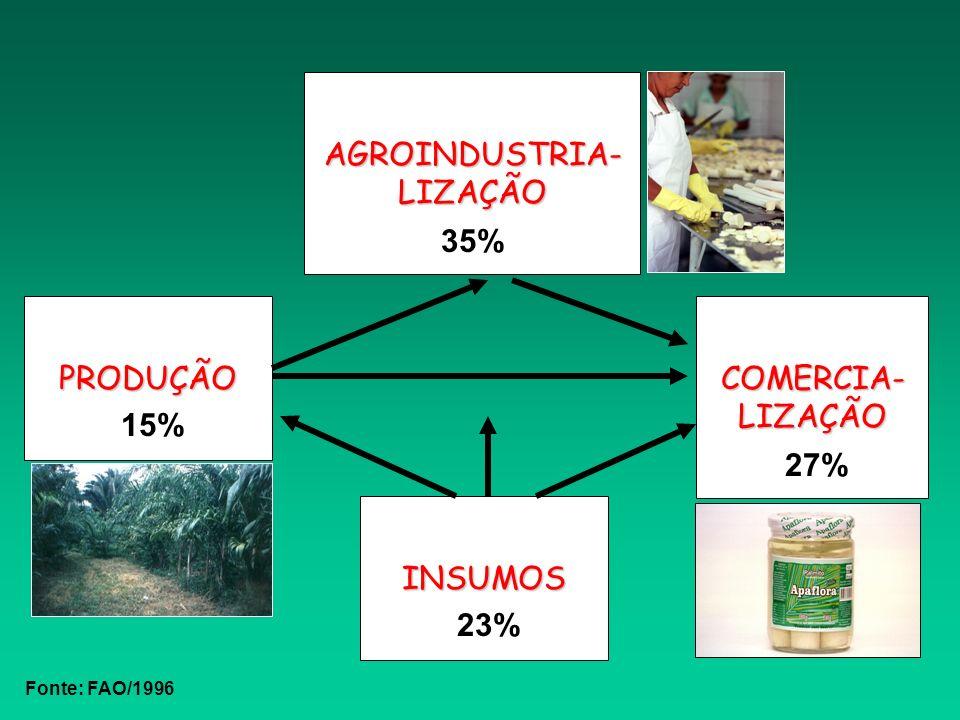 PRODUÇÃO AGROINDUSTRIA- LIZAÇÃO COMERCIA- LIZAÇÃO INSUMOS 15% 23% 35% 27% Fonte: FAO/1996