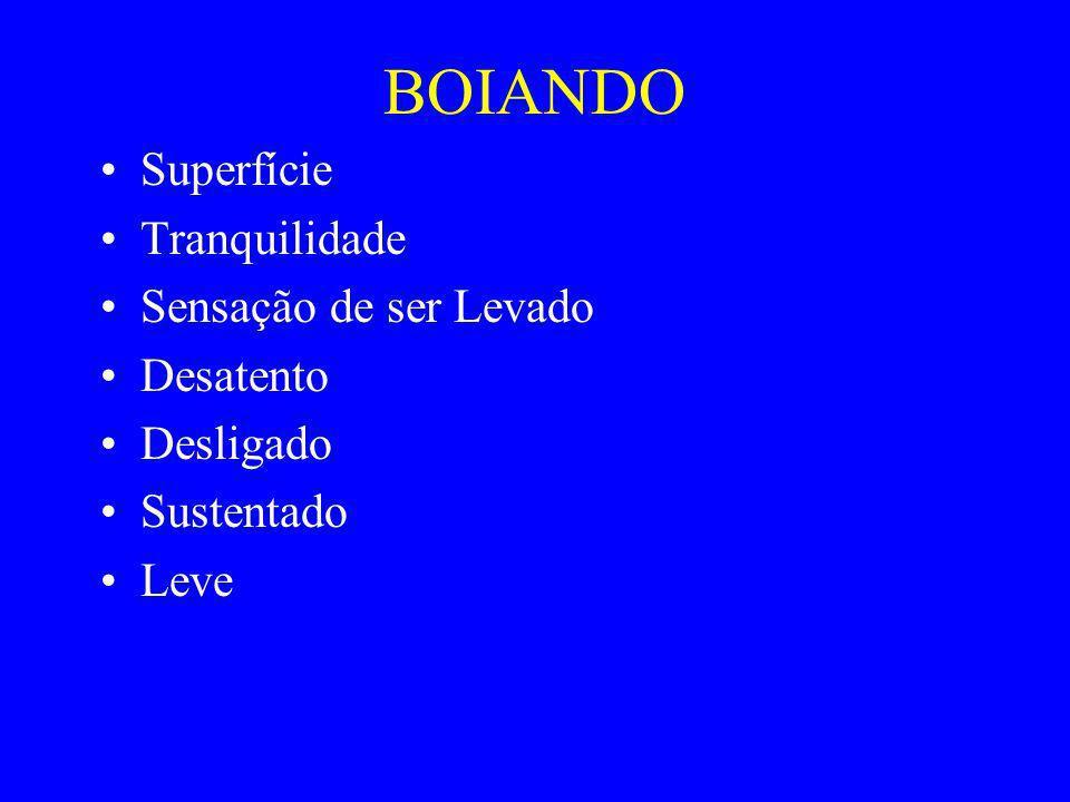 BOIANDO Superfície Tranquilidade Sensação de ser Levado Desatento Desligado Sustentado Leve