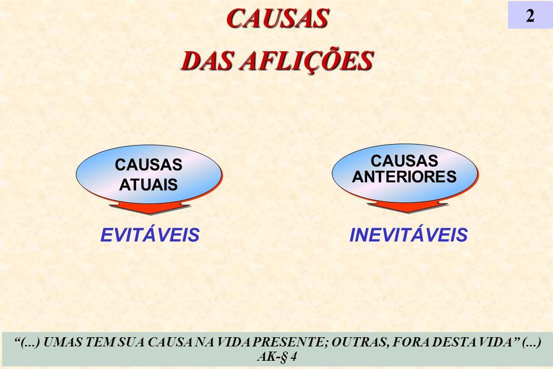 CAUSAS ANTERIORES CAUSAS ANTERIORES EVITÁVEIS CAUSAS ATUAIS CAUSAS ATUAIS CAUSAS DAS AFLIÇÕES 2 INEVITÁVEIS (...) UMAS TEM SUA CAUSA NA VIDA PRESENTE;