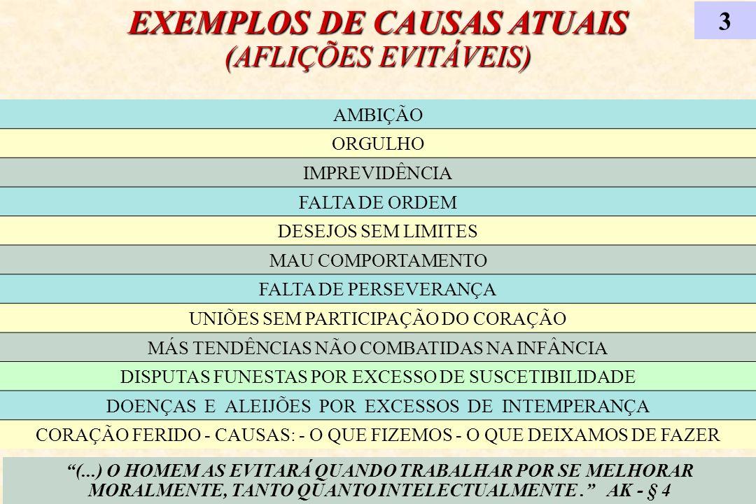 EXEMPLOS DE CAUSAS ATUAIS (AFLIÇÕES EVITÁVEIS) 3 (...) O HOMEM AS EVITARÁ QUANDO TRABALHAR POR SE MELHORAR MORALMENTE, TANTO QUANTO INTELECTUALMENTE.