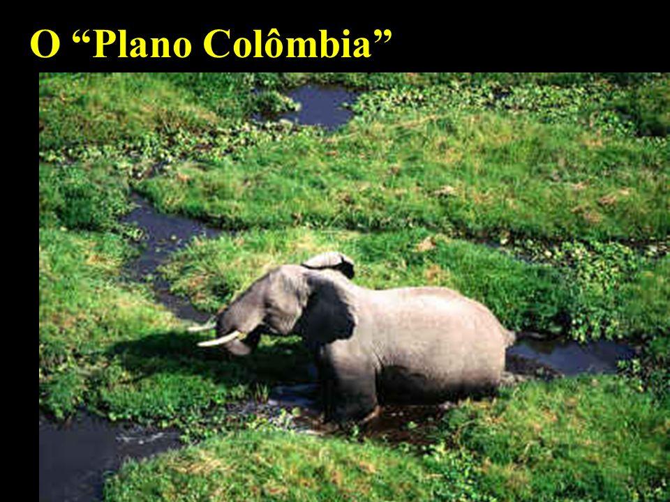 O Plano Colômbia mhcc