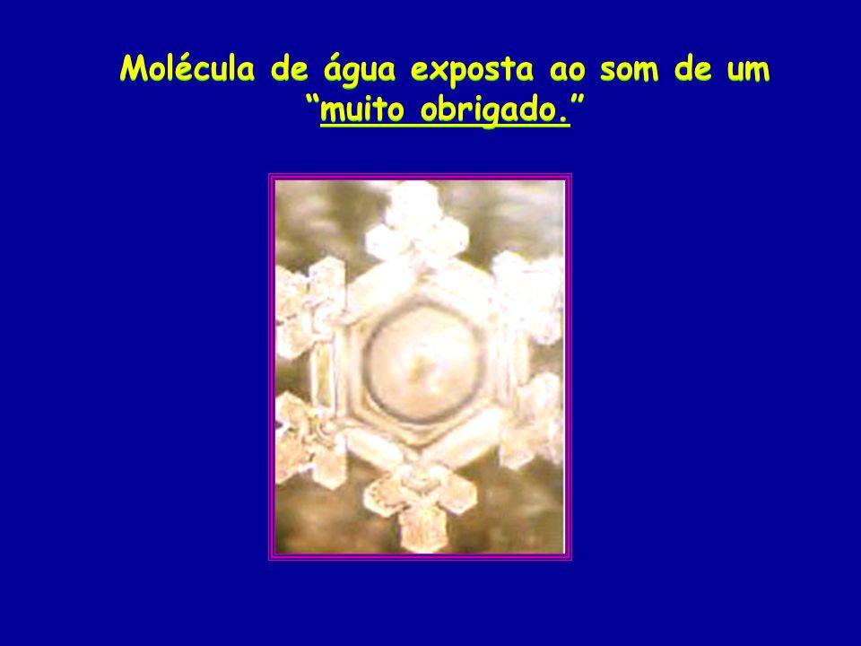Molécula de água exposta ao som de ummuito obrigado.