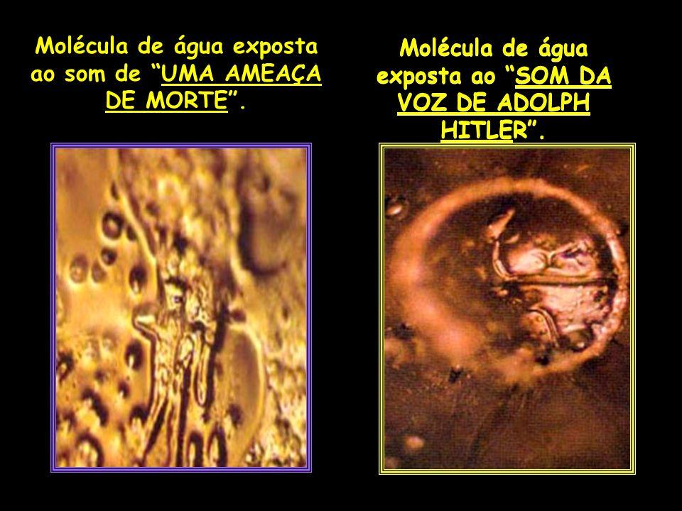 Molécula de água exposta ao SOM DA VOZ DE ADOLPH HITLER. Molécula de água exposta ao som de UMA AMEAÇA DE MORTE.