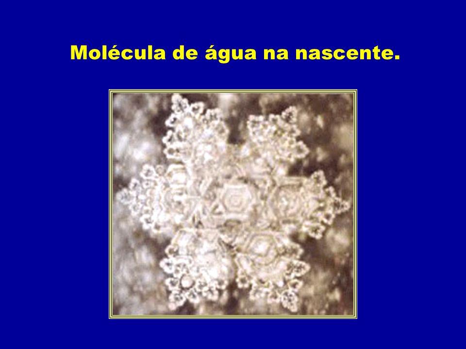 Molécula de água na nascente.