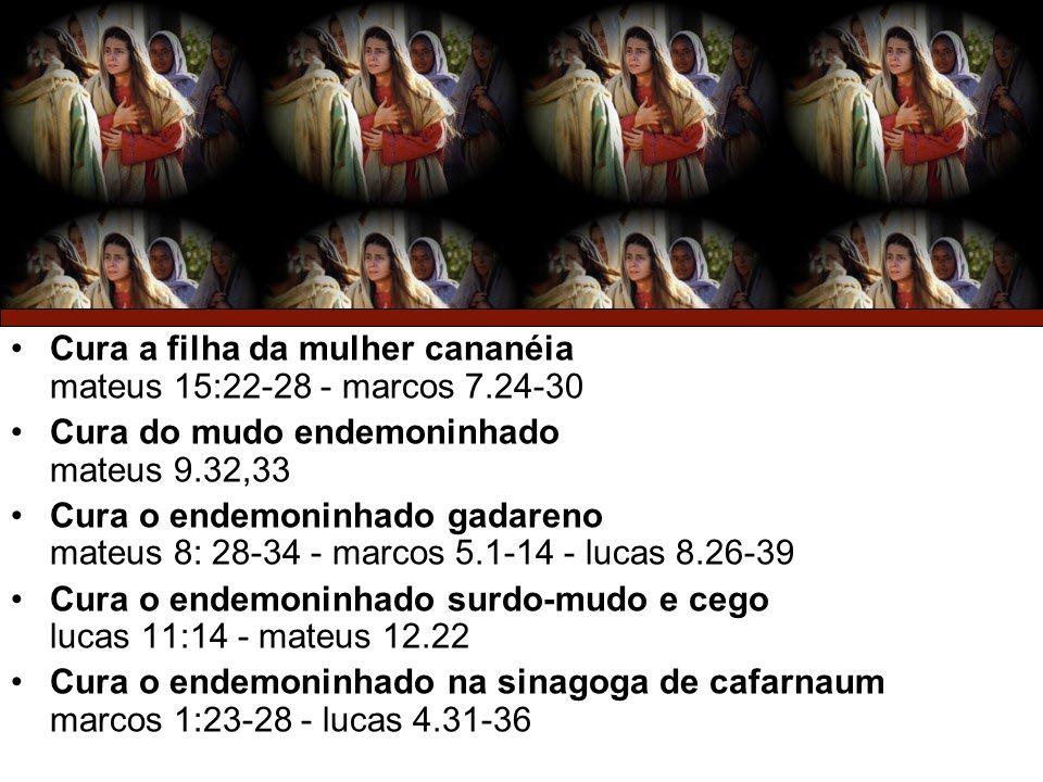 31/12/20133 Cura a filha da mulher cananéia mateus 15:22-28 - marcos 7.24-30 Cura do mudo endemoninhado mateus 9.32,33 Cura o endemoninhado gadareno m