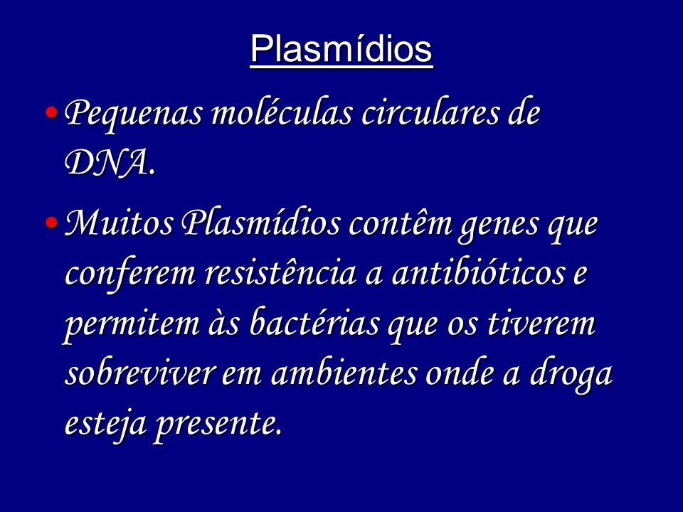 Plasmídios Pequenas moléculas circulares de DNA. Pequenas moléculas circulares de DNA. Muitos Plasmídios contêm genes que conferem resistência a antib