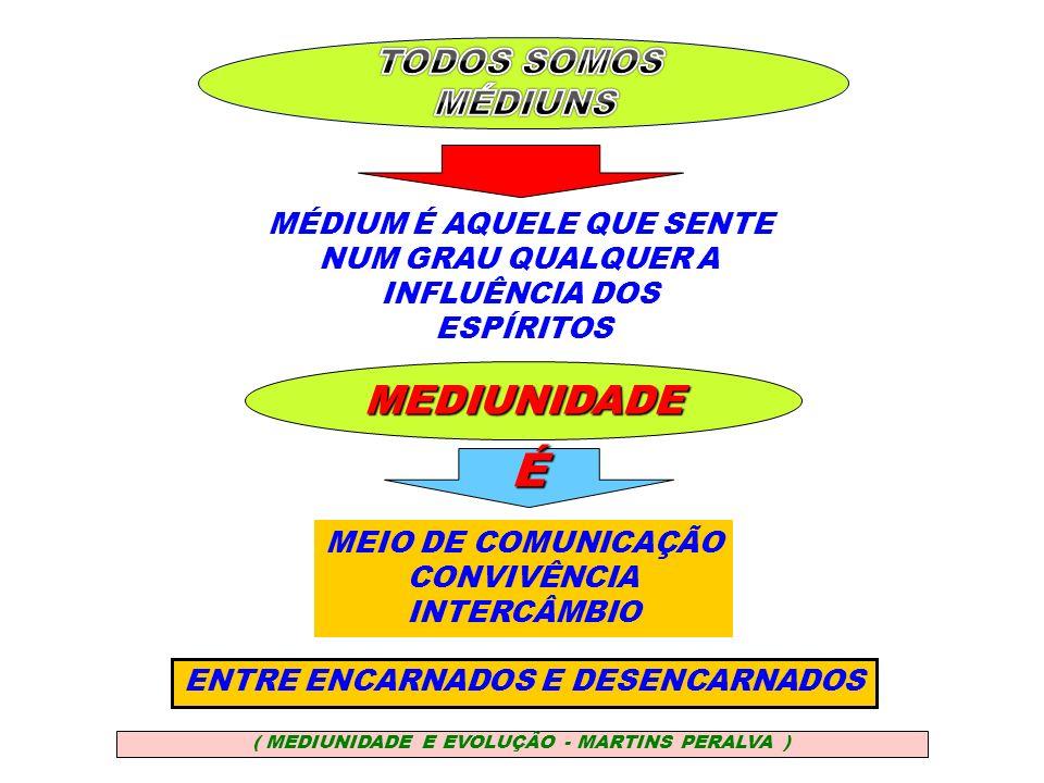 É MÉDIUM É AQUELE QUE SENTE NUM GRAU QUALQUER A INFLUÊNCIA DOS ESPÍRITOS MEDIUNIDADE MEIO DE COMUNICAÇÃO CONVIVÊNCIA INTERCÂMBIO ENTRE ENCARNADOS E DE