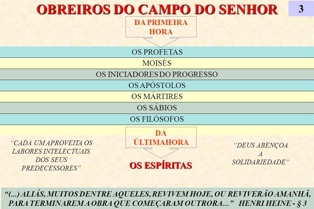OBREIROS DO CAMPO DO SENHOR 3 (...) ALIÁS, MUITOS DENTRE AQUELES, REVIVEM HOJE, OU REVIVERÃO AMANHÃ, PARA TERMINAREM A OBRA QUE COMEÇARAM OUTRORA... H