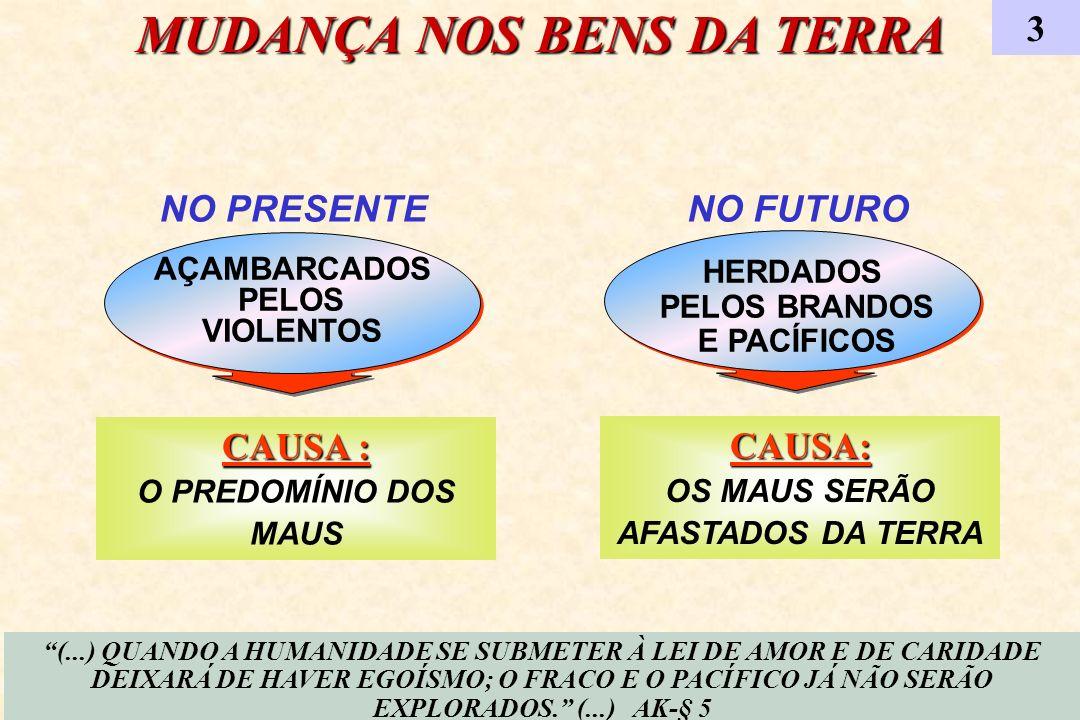 HERDADOS PELOS BRANDOS E PACÍFICOS HERDADOS PELOS BRANDOS E PACÍFICOS NO PRESENTE AÇAMBARCADOS PELOS VIOLENTOS AÇAMBARCADOS PELOS VIOLENTOS MUDANÇA NO
