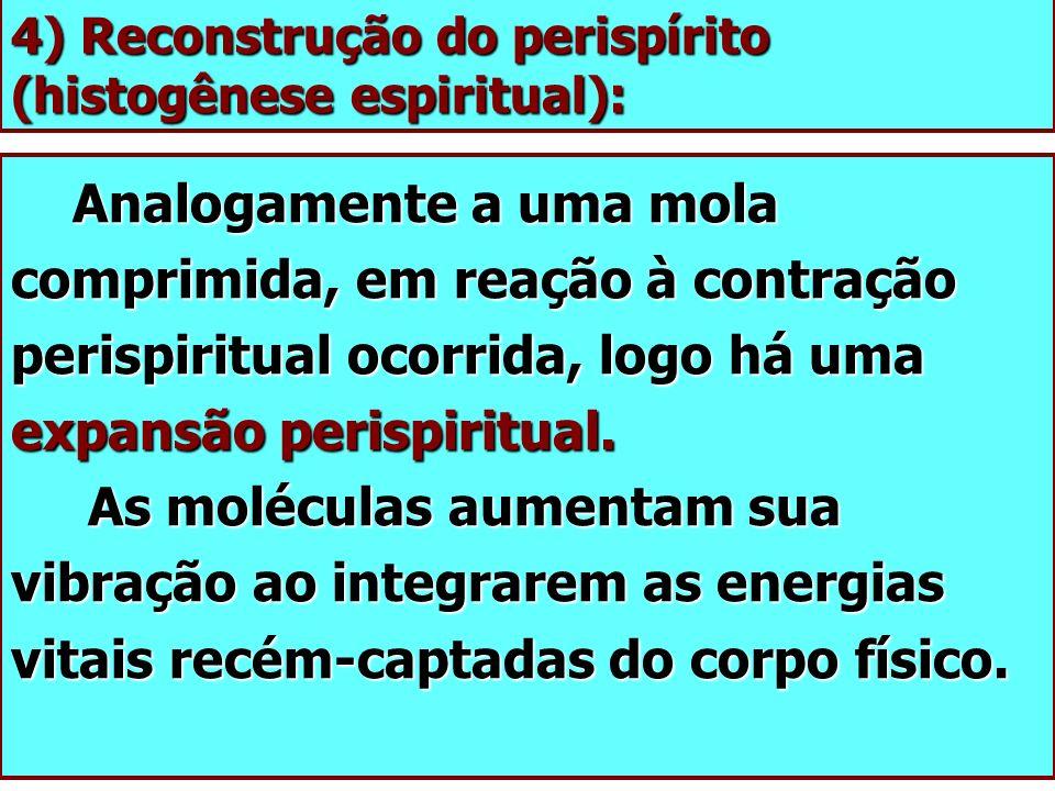 4) Reconstrução do perispírito (histogênese espiritual): Analogamente a uma mola comprimida, em reação à contração perispiritual ocorrida, logo há uma