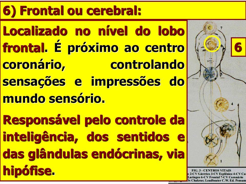 Localizado no nível do lobo frontal. É próximo ao centro coronário, controlando sensações e impressões do mundo sensório. Responsável pelo controle da
