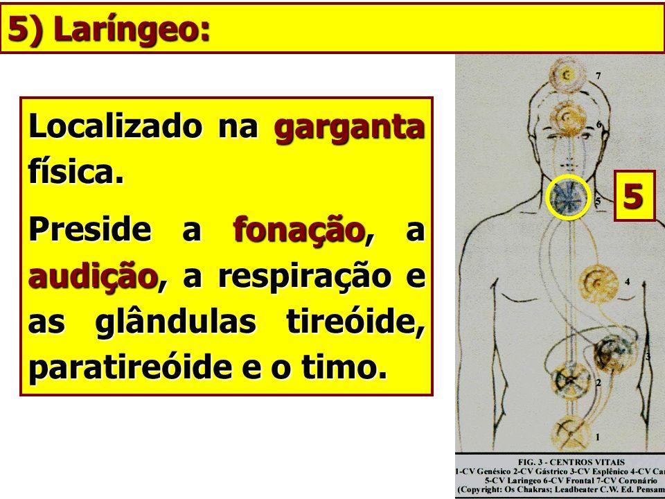 Localizado na garganta física. Preside a fonação, a audição, a respiração e as glândulas tireóide, paratireóide e o timo. 5) Laríngeo: 5