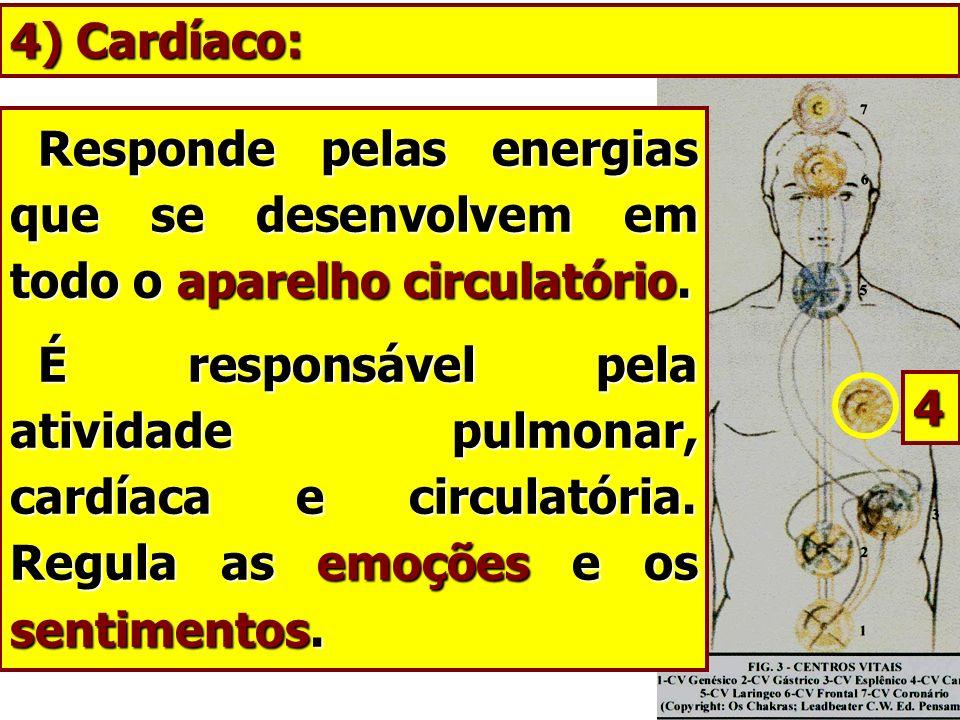 Responde pelas energias que se desenvolvem em todo o aparelho circulatório. Responde pelas energias que se desenvolvem em todo o aparelho circulatório