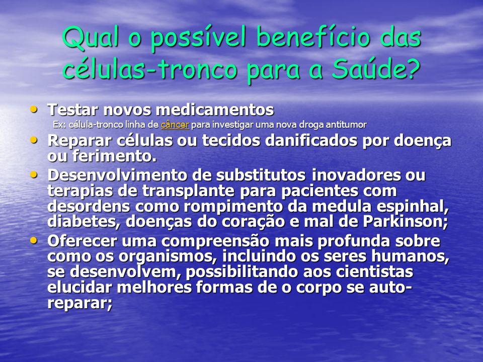 Qual o possível benefício das células-tronco para a Saúde? Testar novos medicamentos Testar novos medicamentos Ex: célula-tronco linha de câncer para