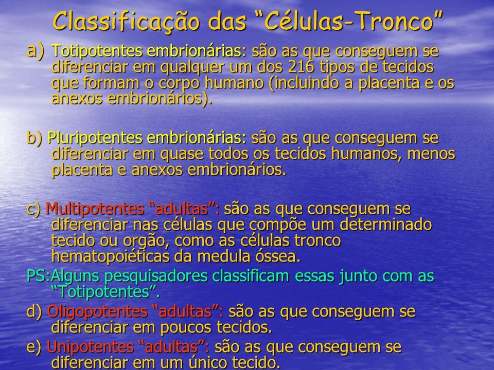Classificação das Células-Tronco a) Totipotentes embrionárias: são as que conseguem se diferenciar em qualquer um dos 216 tipos de tecidos que formam