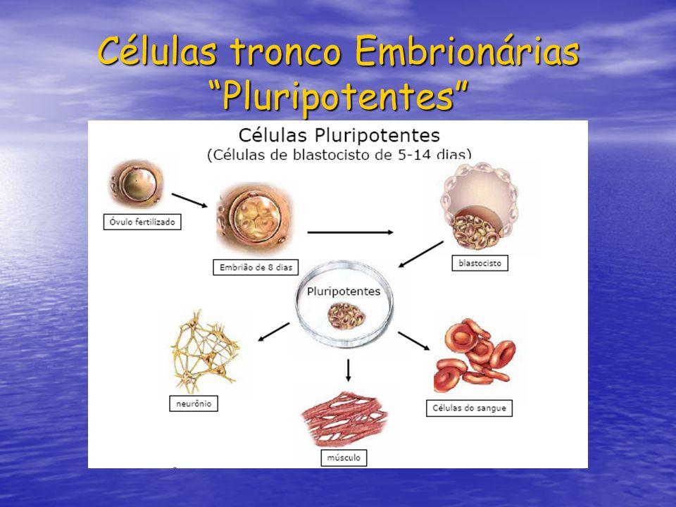 Células tronco Embrionárias Pluripotentes