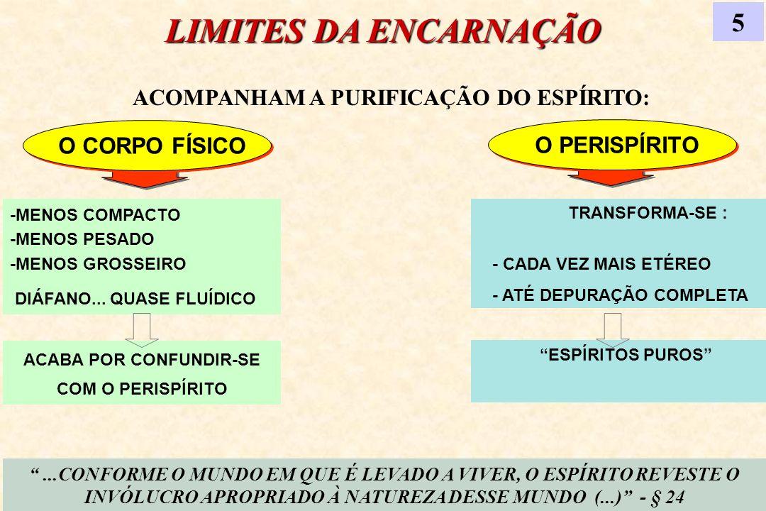 LIMITES DA ENCARNAÇÃO 5 O CORPO FÍSICO O PERISPÍRITO -MENOS COMPACTO -MENOS PESADO -MENOS GROSSEIRO DIÁFANO... QUASE FLUÍDICO TRANSFORMA-SE :. - CADA