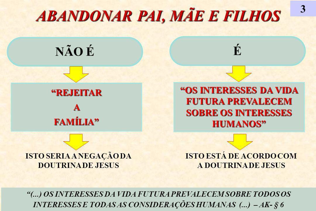 ABANDONAR PAI, MÃE E FILHOS NÃO É REJEITAR A FAMÍLIA 3 (...) OS INTERESSES DA VIDA FUTURA PREVALECEM SOBRE TODOS OS INTERESSES E TODAS AS CONSIDERAÇÕES HUMANAS (...) – AK- § 6 É OS INTERESSES DA VIDA FUTURA PREVALECEM SOBRE OS INTERESSES HUMANOS ISTO SERIA A NEGAÇÃO DA DOUTRINA DE JESUS ISTO ESTÁ DE ACORDO COM A DOUTRINA DE JESUS