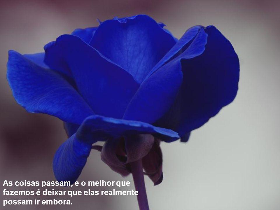 E lembra-te : Tudo o que chega, chega sempre por alguma razão (Fernando Pessoa) E lembra-te : Tudo o que chega, chega sempre por alguma razão (Fernando Pessoa)