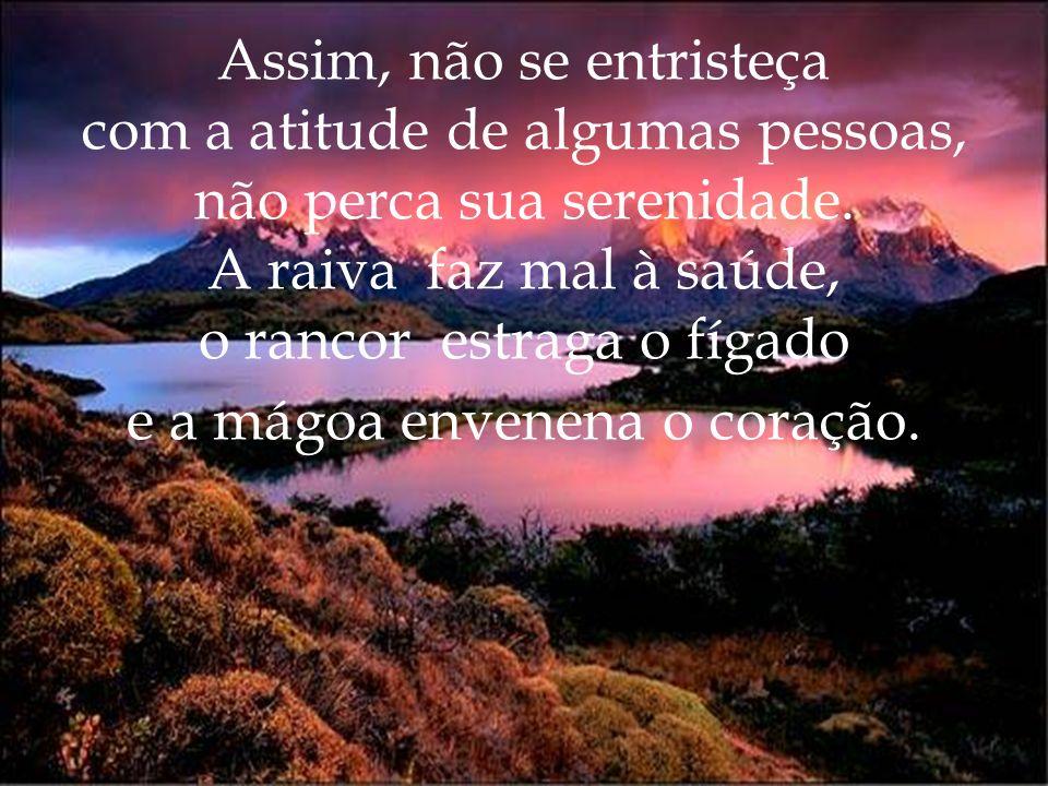 Assim, não se entristeça com a atitude de algumas pessoas, não perca sua serenidade.
