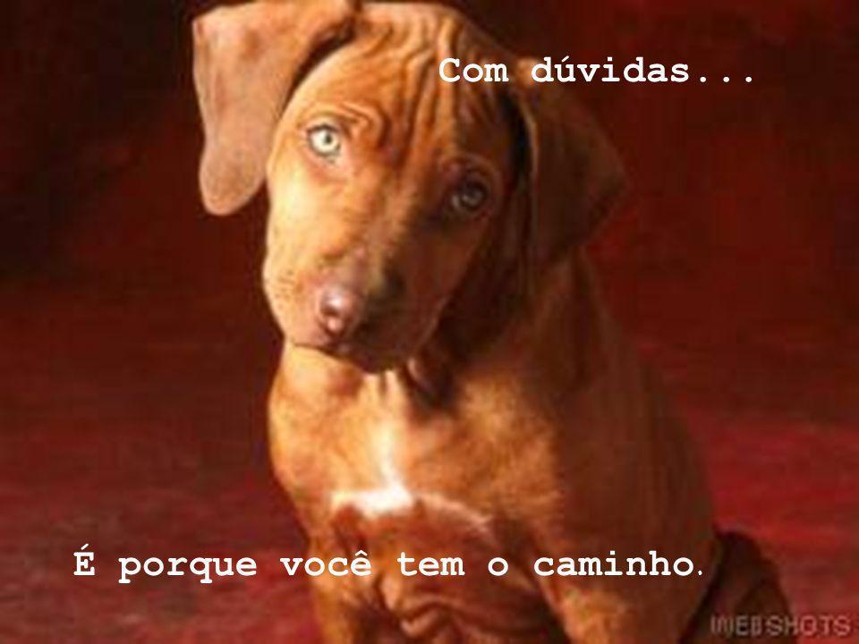 liliane_freire@hotmail.com lilifreire0505@yahoo.com.br www.lagodecristal.blogspot.com Com beijos...