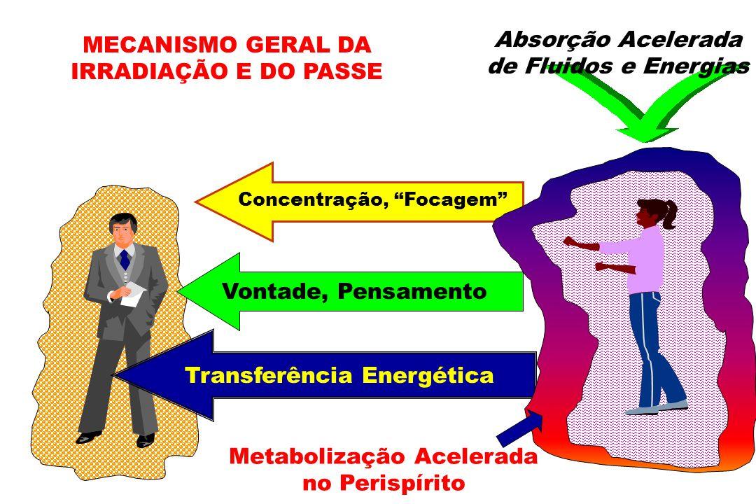 MECANISMO GERAL DA IRRADIAÇÃO E DO PASSE Absorção Acelerada de Fluidos e Energias Concentração, Focagem Vontade, Pensamento Transferência Energética M
